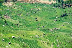 Yuanyang-Reis-Terrassen, Yunnan - China Stockfotografie