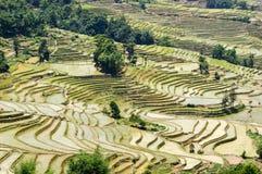 Yuanyang-Reis-Terrassen, Yunnan - China Lizenzfreie Stockfotos