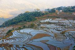 Yuanyang rice fields in Yunnan province, China Stock Photos