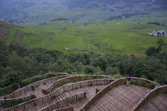 YuanYang Rice Paddies Stock Image