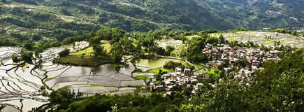 Yuanyang rice terrace. Territory of Yuanyang County is full of mountains, all terraces were built on the hillside,Yuanyang rice terrace located in Yuanyang Stock Image