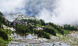 Yuanyang rice terrace Stock Photos