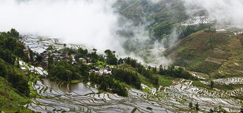 Yuanyang rice terrace Royalty Free Stock Image