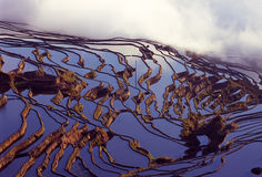 Yuanyang rice terraces Stock Photography