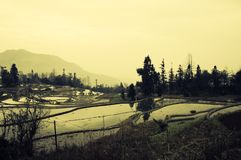 Yuanyang Rice Terraces and Fields - Chinese Landscapes Stock Images