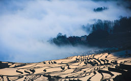 Yuanyang Terrace Sunrise Royalty Free Stock Images