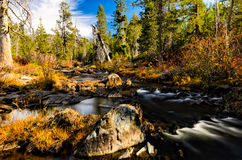 Yuba River. Calm stream during autumn Stock Photos