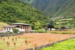 YUBENG, CINA - 9 agosto 2014: Villaggio di Yubeng un punto di riferimento famoso dentro fotografia stock