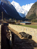 Yubeng tradition country village in Deqin city, China Royalty Free Stock Photos