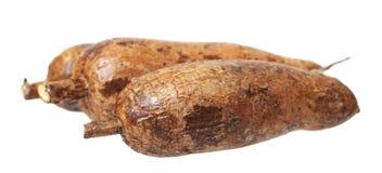 Yuca roots Stock Photo