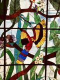 A fantastic Mexican stained glass window features a colorful parrot. The Yucatán Peninsula separates the Gulf of Mexico from the Caribbean Sea, encompassing 3 royalty free stock photography