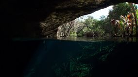 Yucatan Mexico cenotes. Clean and clear underground water stock video