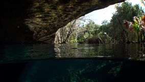 Yucatan Mexico cenotes. Clean and clear underground water stock footage