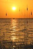 Yucatan Peninsula Beach Stock Photography