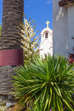 Yucca, Bloom, Church Stock Image