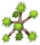 Yucca brevifolia. Illustration of a close up tree vector illustration