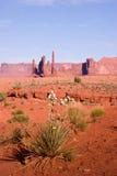 Yucca che fiorisce e formazioni rocciose alla valle del monumento Fotografia Stock