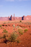 Yucca Flowering and Rock formations at Monument Valley Stock Photography