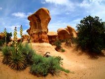 Yuccaanlage und -Unglücksboten auf Sandsteinwüste gestalten in Escalante, Utah landschaftlich Stockbild
