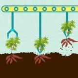 Yuccas de moisson mécaniques Photographie stock libre de droits