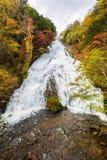Yudaki faller i höstsäsong på Nikko, Japan fotografering för bildbyråer