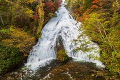 Yudakidalingen in de herfstseizoen in Nikko, Japan royalty-vrije stock foto's