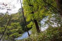 Yudakidalingen, Nikko, Tochigi, Japan Mening van de weg tussen het observatiedek en de bovenkant van de watervallen Stock Foto's