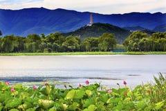 Yue Feng Pagoda Lotus Garden Summer Palace Beijing China. Yue Feng Pagonda Pink Lotus Pads Garden Reflection Summer Palace Beijing China royalty free stock photos