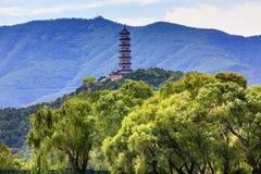 Yue Feng Pagoda Willow Trees Summer-Paleis Peking China Stock Afbeelding
