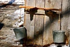 Yugo del cubo del jarabe de arce Imagen de archivo