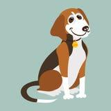 Yugoslavian tricolor hound. Vector illustration Royalty Free Stock Photo