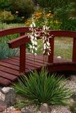 Yukka and the garden bridge. Stock Photos
