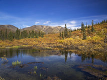 Yukon Stockfoto