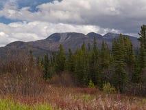 Yukon Stockbilder