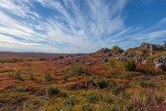 Yukon arctic tundra in fall colors Stock Photo