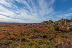 Yukon arktisk tundra i nedgångfärger arkivfoto