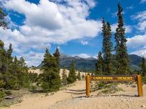 Έδαφος Καναδάς Yukon αμμόλοφων άμμου ερήμων Carcross Στοκ εικόνα με δικαίωμα ελεύθερης χρήσης