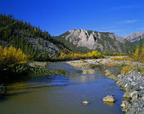 Yukon in the fall. Yukon - Sapper Hill and Engineer Creek Stock Photo