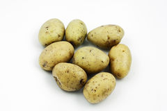 Yukon Gold Potatoes Stock Image