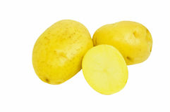 Yukon Gold potatoes Royalty Free Stock Photo