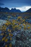 Yukon mountain Stock Photo