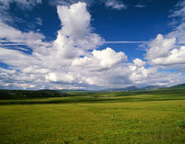Yukon nature scenery with grass Stock Image
