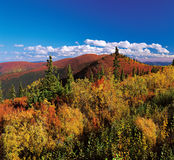 Yukon - Ogilvie Mountains in the fall Stock Photography