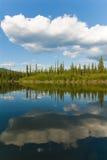 Yukon River landskap Royaltyfria Bilder