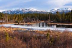 Yukon taiga wetland marsh spring thaw Canada Stock Photography
