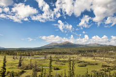 Yukon Territory Wilderness Royalty Free Stock Photo