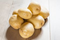 Yukon white potatoes Stock Photos