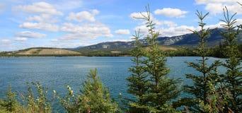 Yukonrivier, Whitehorse, Yukon, Canada Royalty-vrije Stock Foto's