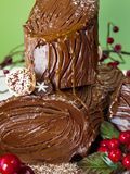 Yule Log Cake Royalty Free Stock Image