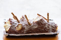 Yule log Christmas cake Stock Images